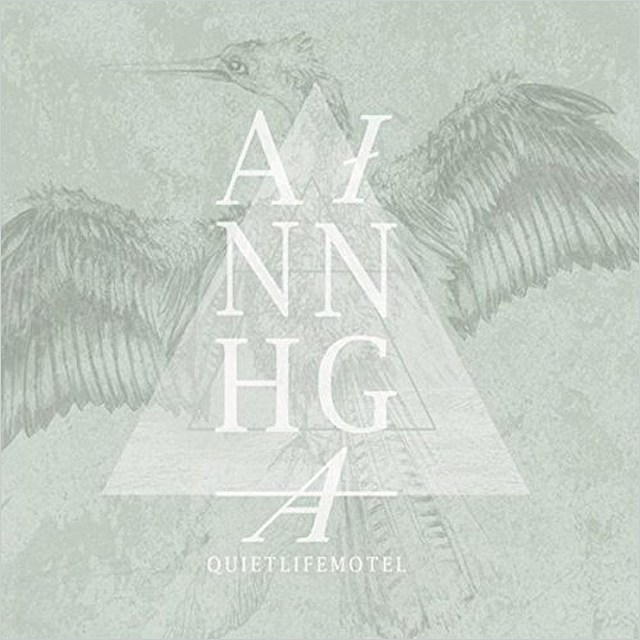 Anhinga - Quiet Life Motel - David Schulman
