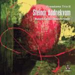 Steinar Aadnekvam - Freedoms Trio II